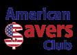 610_americansavers-v42x